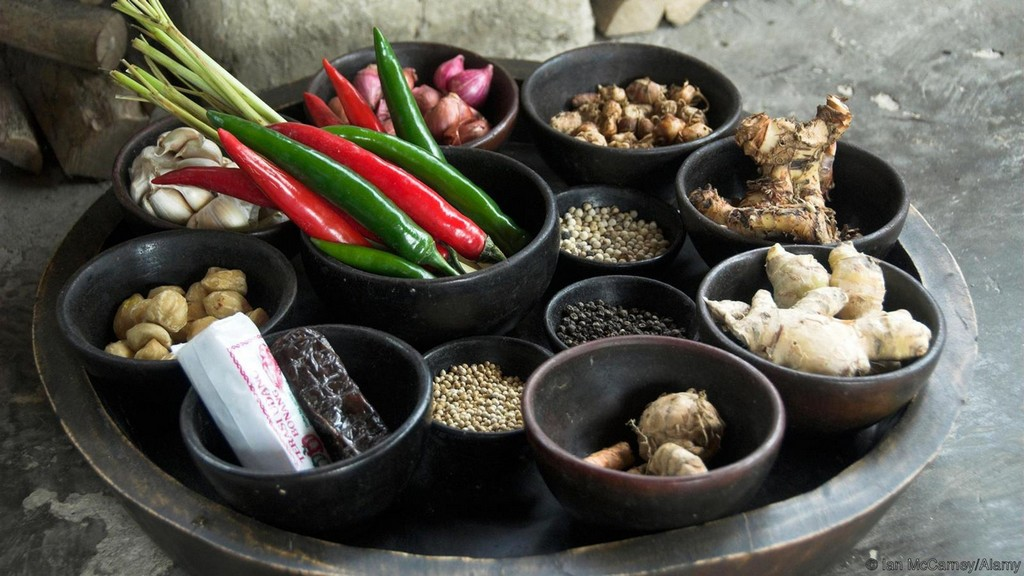 Spices, Babi guling, roasted suckling pig, Bali, Indonesia