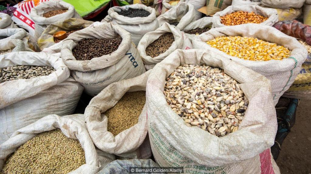 Venezuela to eat grains, like lentils, with sugar