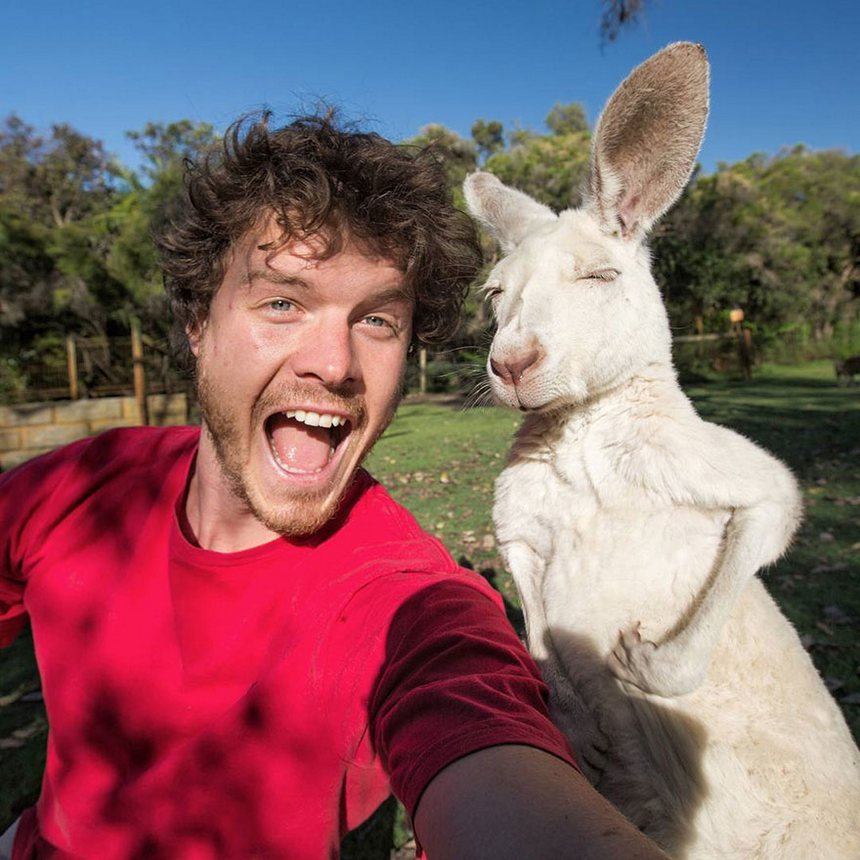 allan dixon master selfies with animals 1