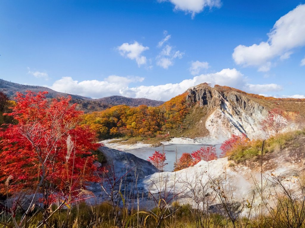 jigokudanis-colors-are-particularly-vibrant-during-the-fall