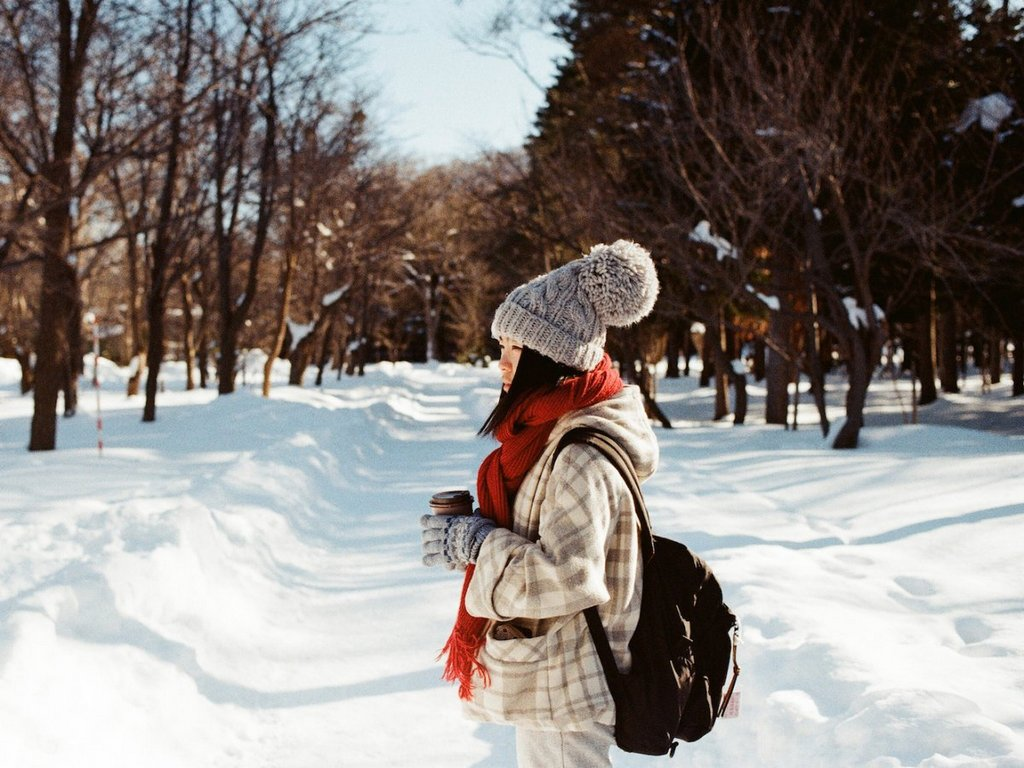 sapporo-has-a-high-snowfall-for-a-large-city
