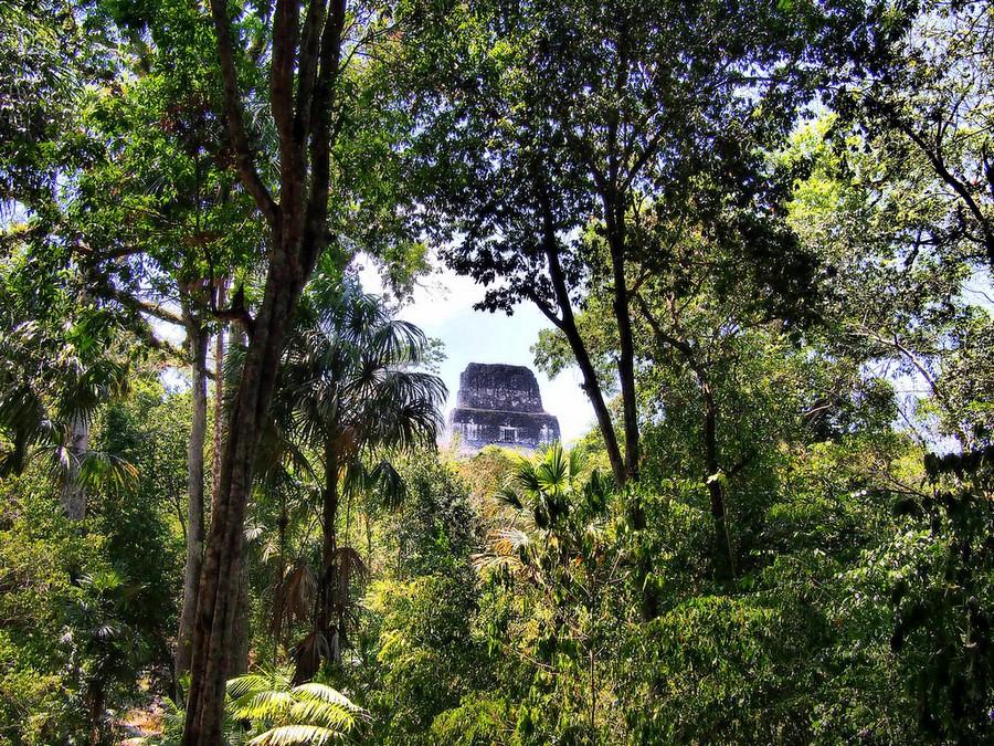 tikal civilization Lidar technology reveals secrets of ancient maya civilization ancientpagescom | february 3, 2018 | archaeology news,  including the largest at tikal, and el zotz .