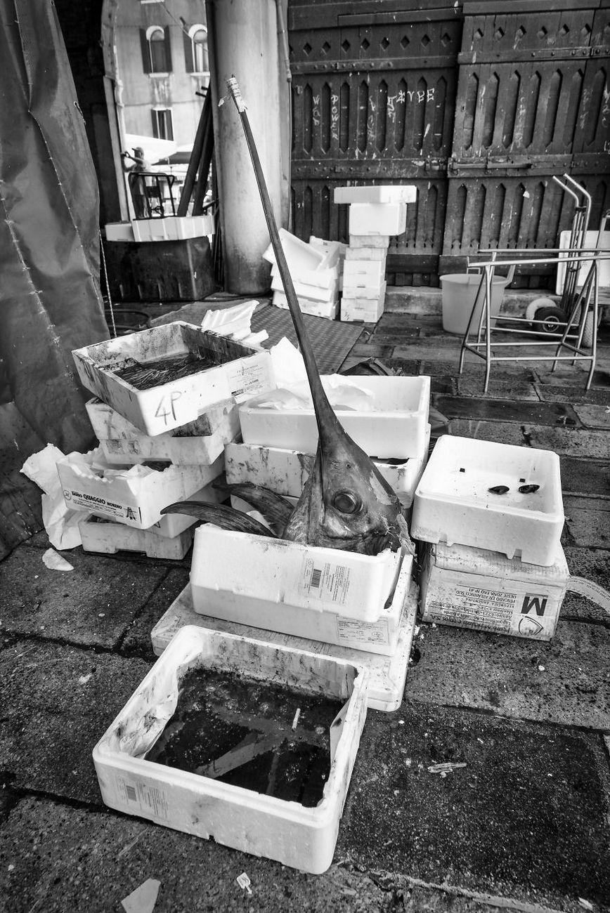 venezia venice italy daily life photos photography trave 32