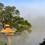 Explore Bokeo Nature Reserve — A 'hidden paradise' of Laos