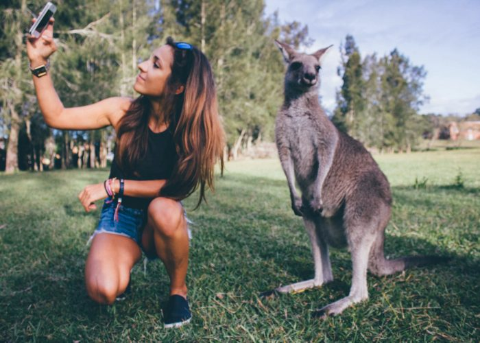 Leave-the-Animals-Alone-tips to become a good and better traveller