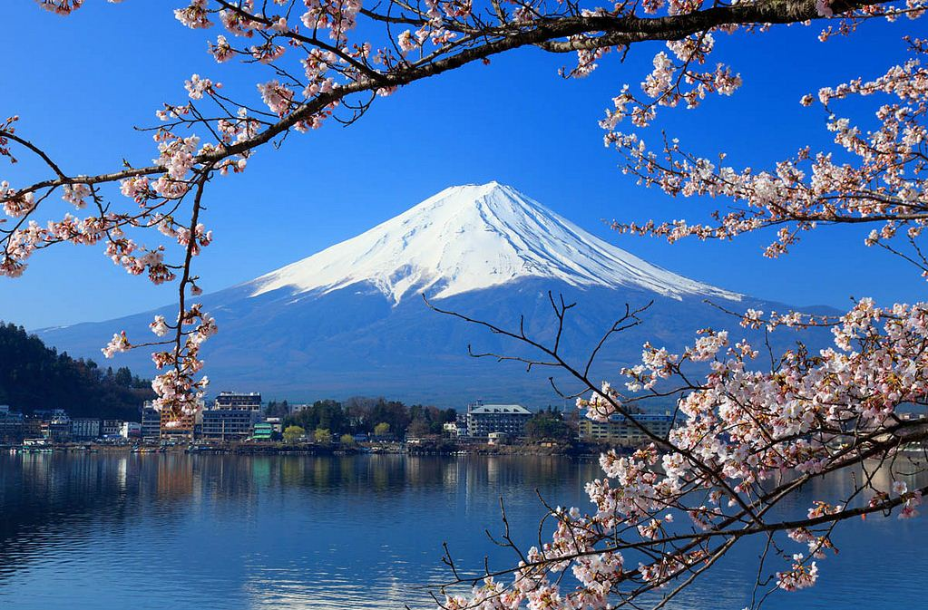 cherry blossoms Mt. Fuji from lake Kawaguchi best places spots to take photos of mount fuji 24