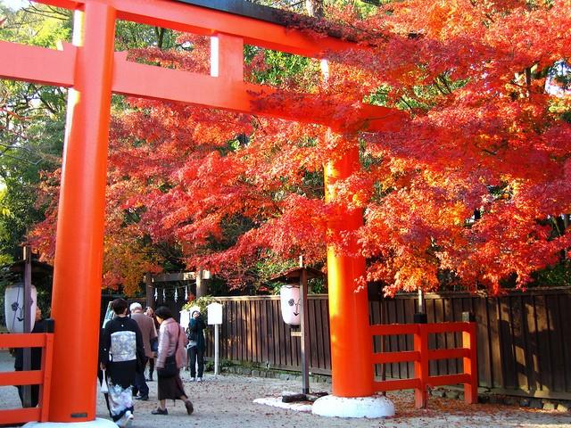 Shimogamo-Jinja Shrine, Kyoto temples, Japan