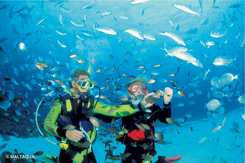 diving malta island nation photo photography tourist attractions