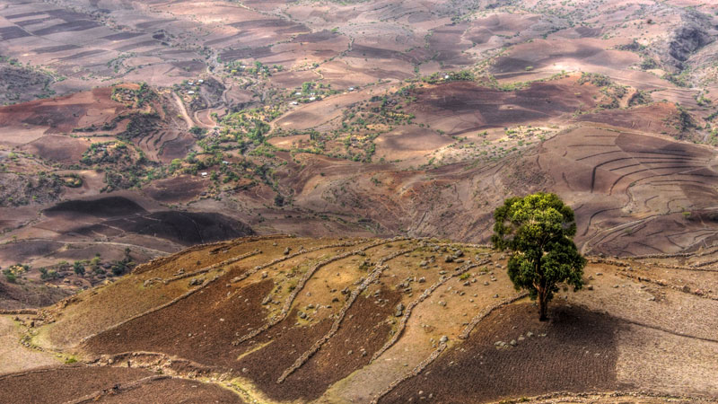 ethiopia-facts-mariusz-kluzniak-2