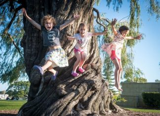 family travel tips tricks traveling with kids children