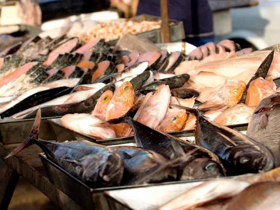 fish market malta island nation photo photography tourist attractions