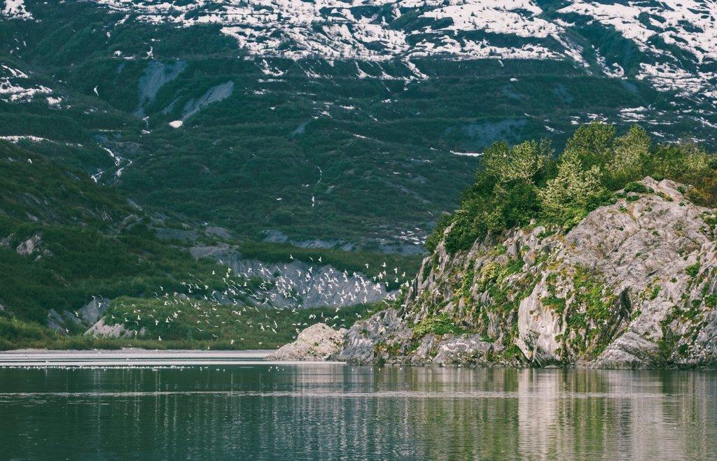 stunning alaska photo travel photography wild ice river ocean (11)