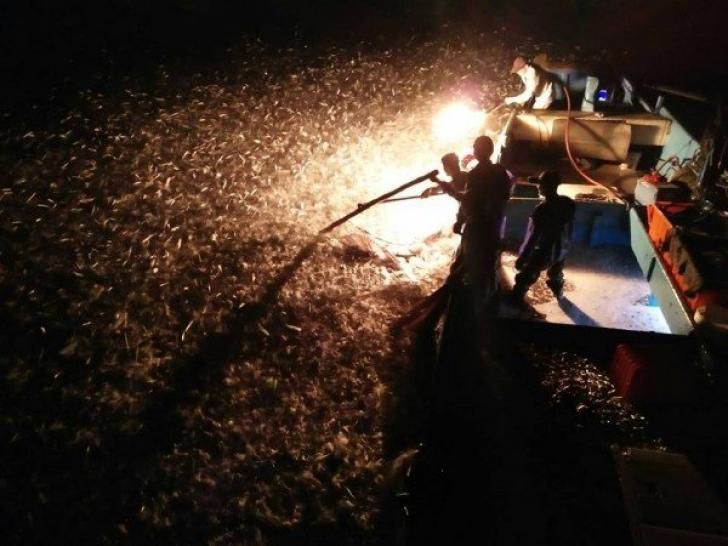 sulfuric fire fishing in Jinshan taiwan (23)