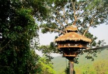 treehouse in Nam Kan, Bokeo Province 2