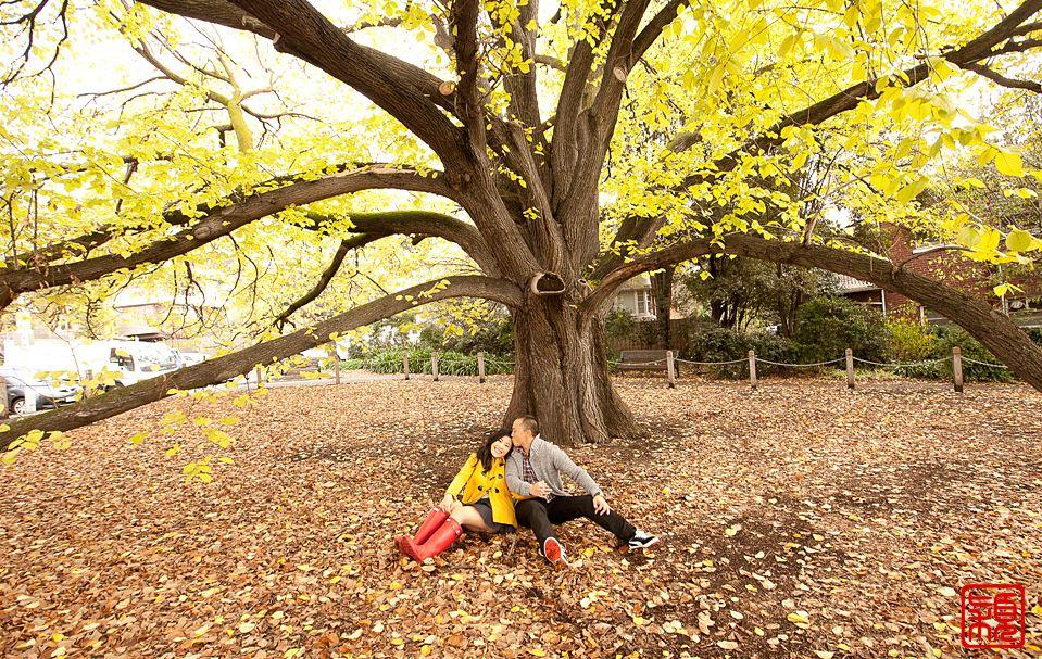 Fitzroy_Gardens melbourn australia in winter