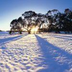 Experience snowfall in Australia