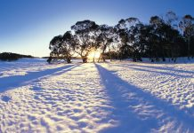snow melbourn city winter australia