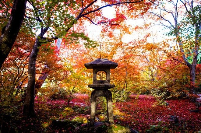 autumn in japan travel photos travel guides