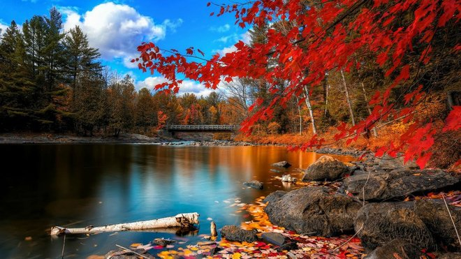 red maple leaf symbol of canada autumn travel destinations