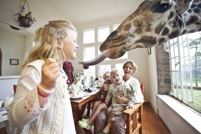 wanderlust_tips_enjoy-breakfast-with giraffes-in-Kenya4