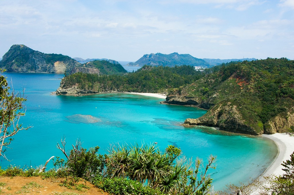 Bonin Islands, Japan wildlife