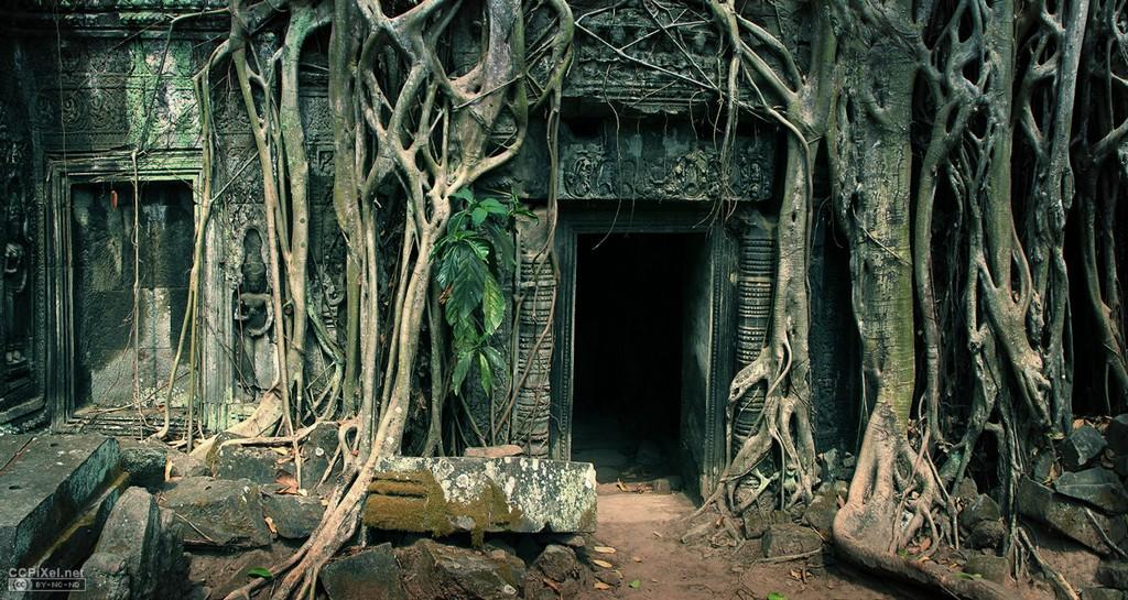 Ta Prohm Temple cambodian travel destinations