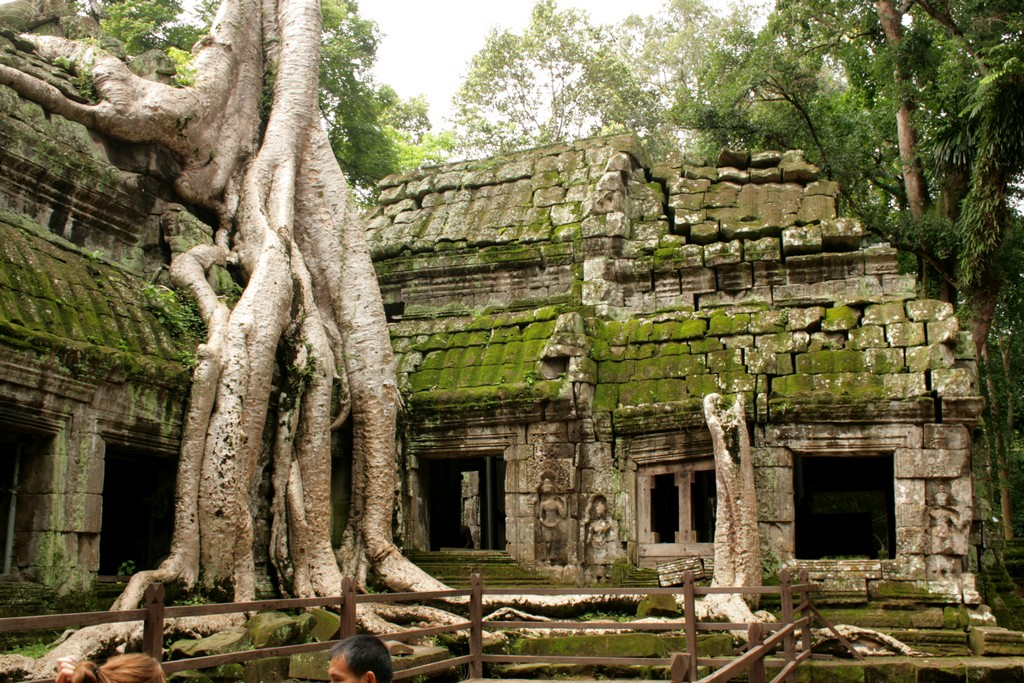 Ta Prohm Temple cambodian travel destinations siem reap tourist attractions best places to visit in siem reap siem reap tourist places