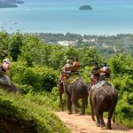 Phuket activities — Top 10 fun activities you should not miss in Phuket, Thailand