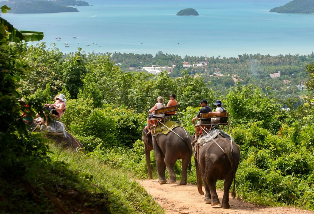 phuket things to do
