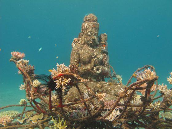 pemuteran-bali-island-new-land-on-the-bali-island-bali-attractions-11
