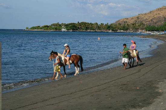 pemuteran-bali-island-new-land-on-the-bali-island-bali-attractions-13