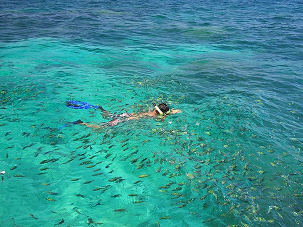 phi phi island tour koh lanta