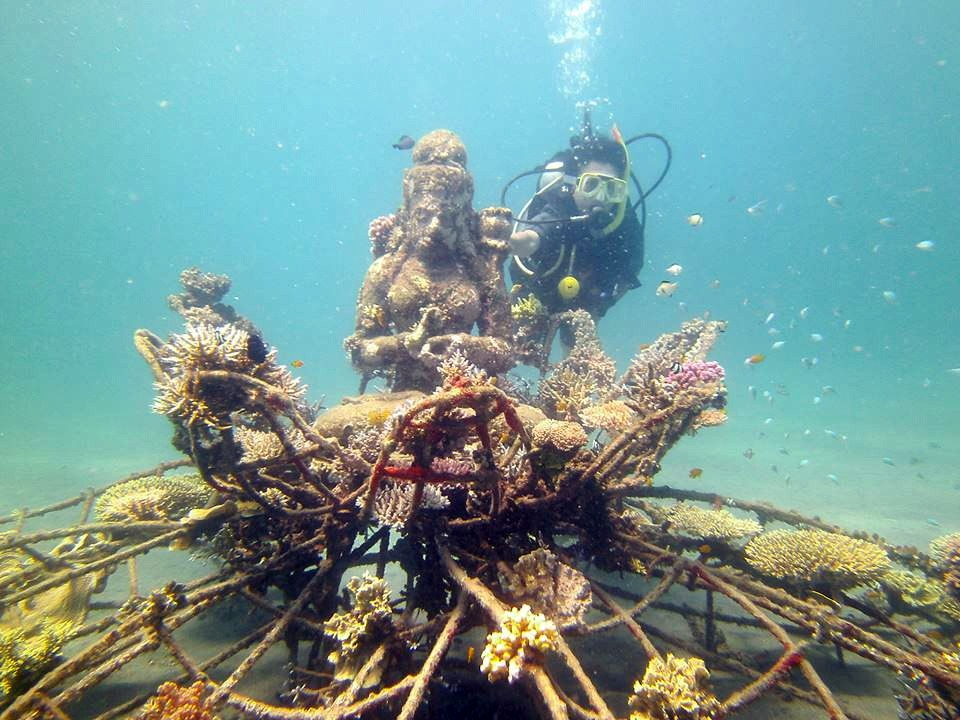 pemuteran-coral-the-new-land-on-the-bali-island12