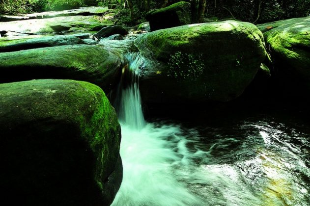tranh-stream-phu-quoc-ideal-place-in-phu-quoc-12