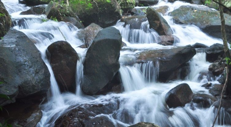 tranh-stream-phu-quoc-ideal-place-in-phu-quoc-23