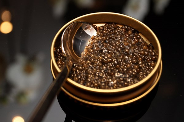 caviar-best food in the world (14)