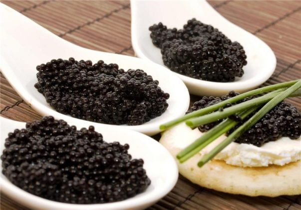 caviar-best food in the world (7)