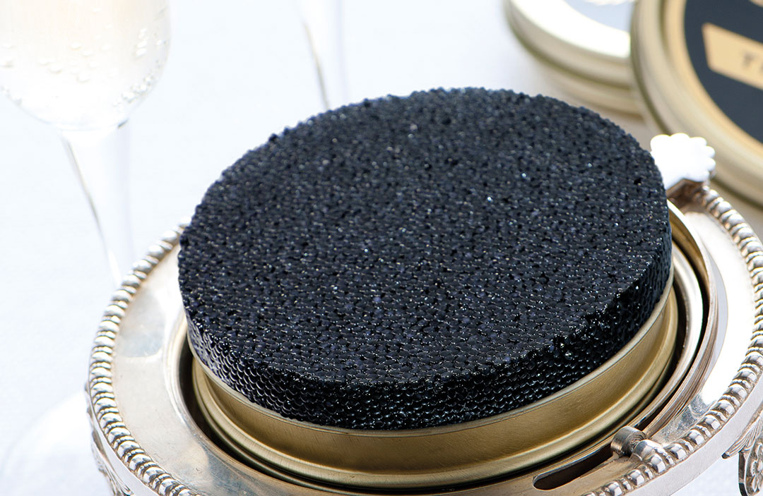 caviar-most luxury cuisine of the world (2)