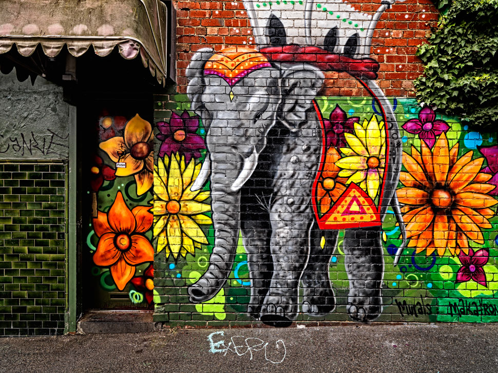 street-art-melbourne-wall-painting (9)