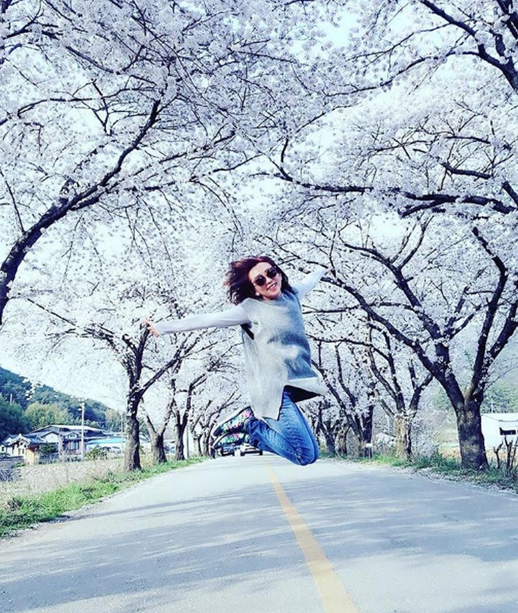 Gyeongju Cherry Blossom Festival, Busan