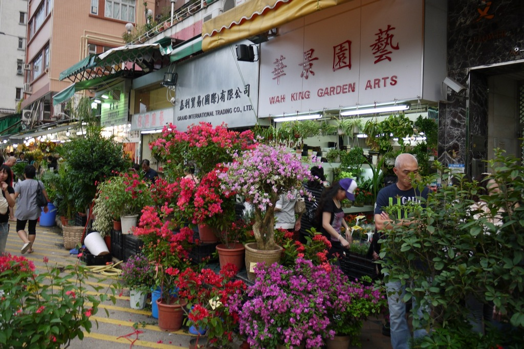 Flower Market Road-hong-kong-explore the fullest hong kong only 3 days