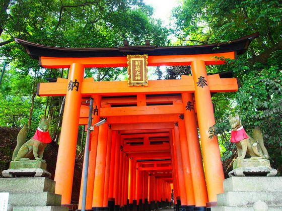 Fushimi Inari Shrine - One of the most famous shrine in Japan (10)
