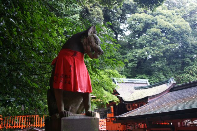 Fushimi Inari Shrine - One of the most famous shrine in Japan (1)1
