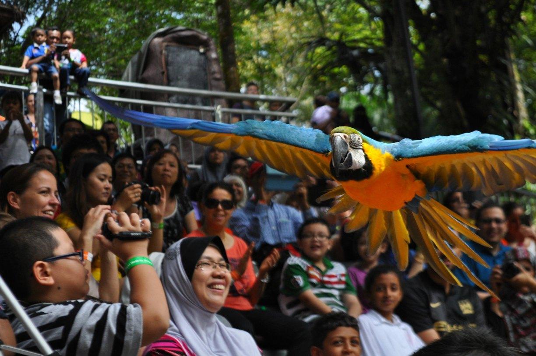 kuala lumpur-bird-park malaysia 2