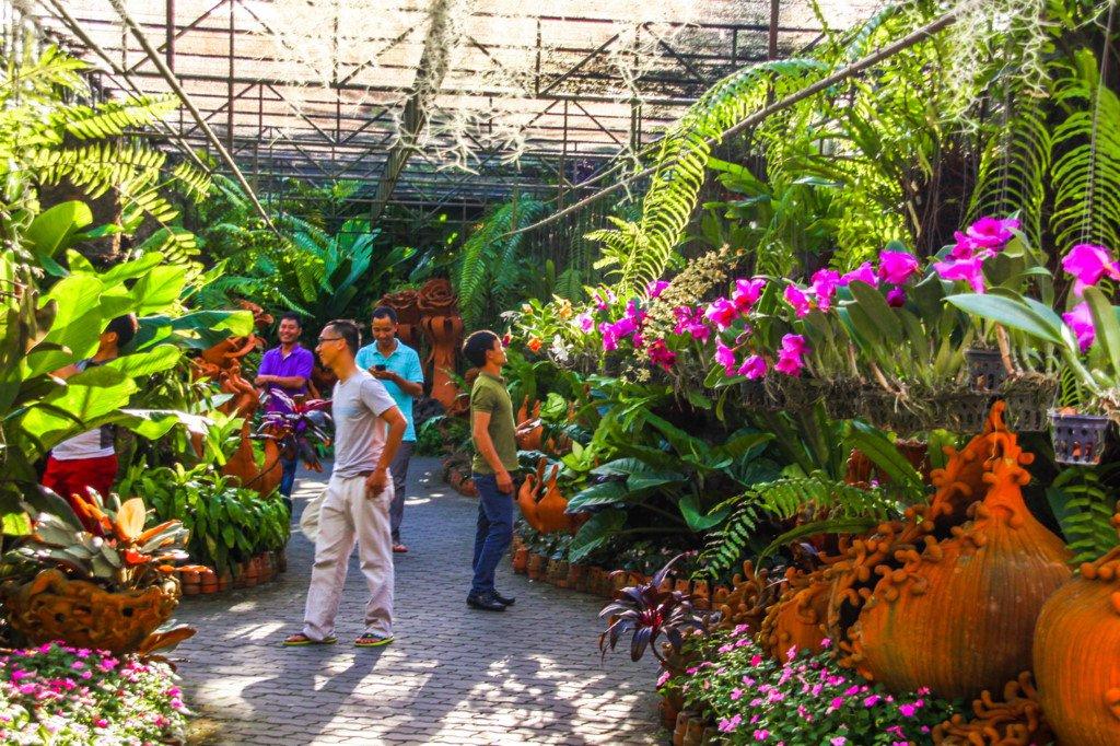 nong nooch tropical botanical garden pattaya thailand (13)
