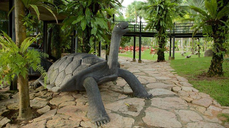 Visiting Nong Nooch Tropical Botanical Garden — One of the ...