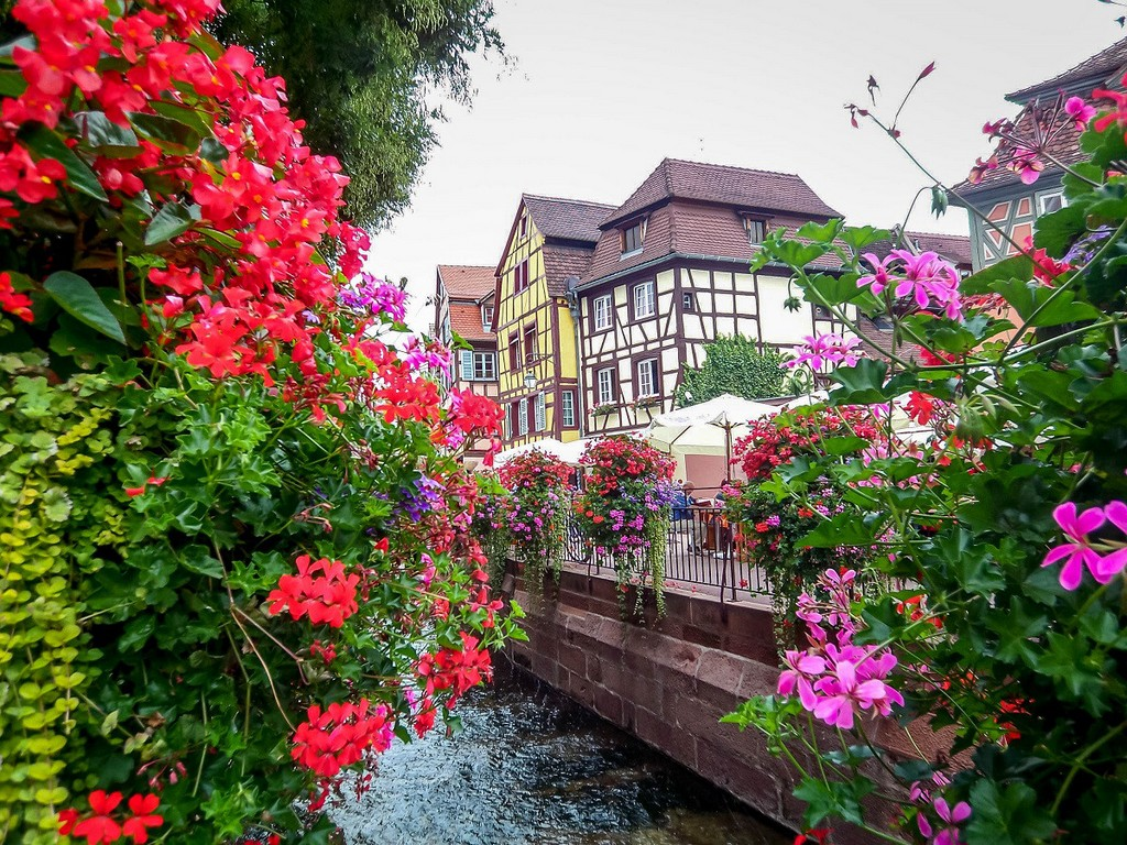 Colmar most beautiful villages of France1