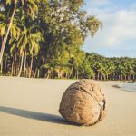 Koh Rong Beach — Discovering 5 best beaches in Koh Rong Island, Cambodia
