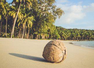 palm beach koh rong island cambodia 2