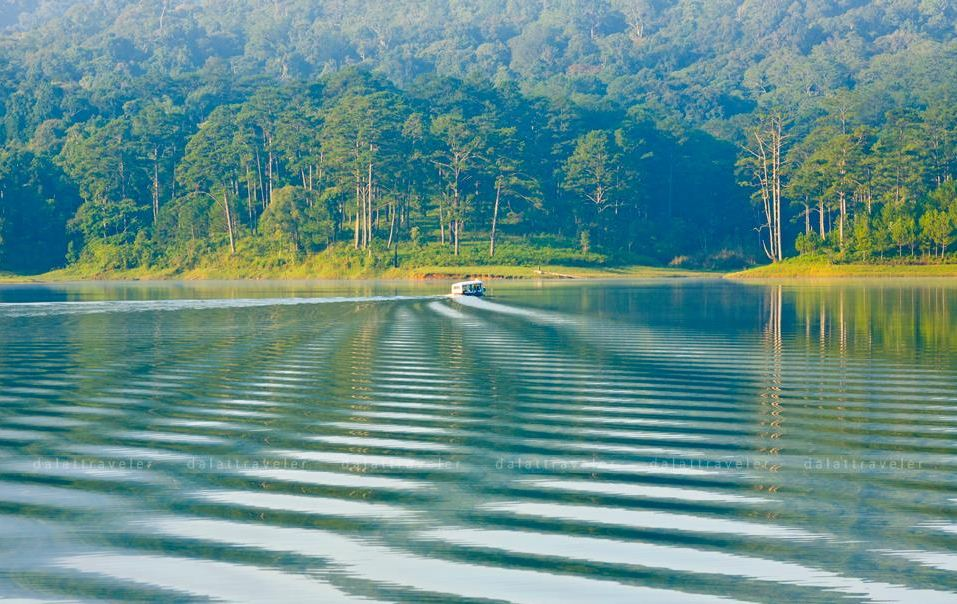 tuyen lam lake dalat (5)